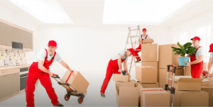 role of the movers